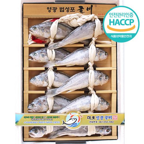 [HACCP시설] 전통방식 영광 법성포굴비 오가 10미(약 1kg, 미당 21~22cm)/가정용 2호
